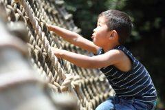 子どもと一緒にカラダを動かそう!都内近郊で遊べるアスレチックスポット9選