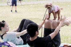 愛犬とゆったりリラックス♪「ドッグヨーガ」を体験してきた!