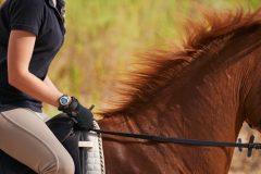 下半身の引き締めに効果アリ! 乗馬で楽しくダイエット #読者特典あり