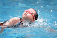 人気が高い水泳!名門スイミングスクールの内容から調べてみた【子どものスポーツ習い事の費用 #1】