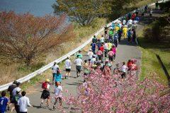 """東北の""""美味い""""を楽しむファンランイベント「東北風土マラソン」は、どのようにして生まれたのか?"""