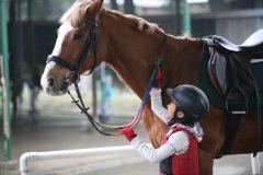 レッスン代無料!こども向け乗馬教室が8月末まで開催