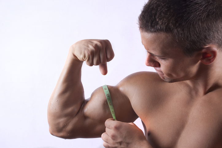 方法 腕 を の 筋肉 つける