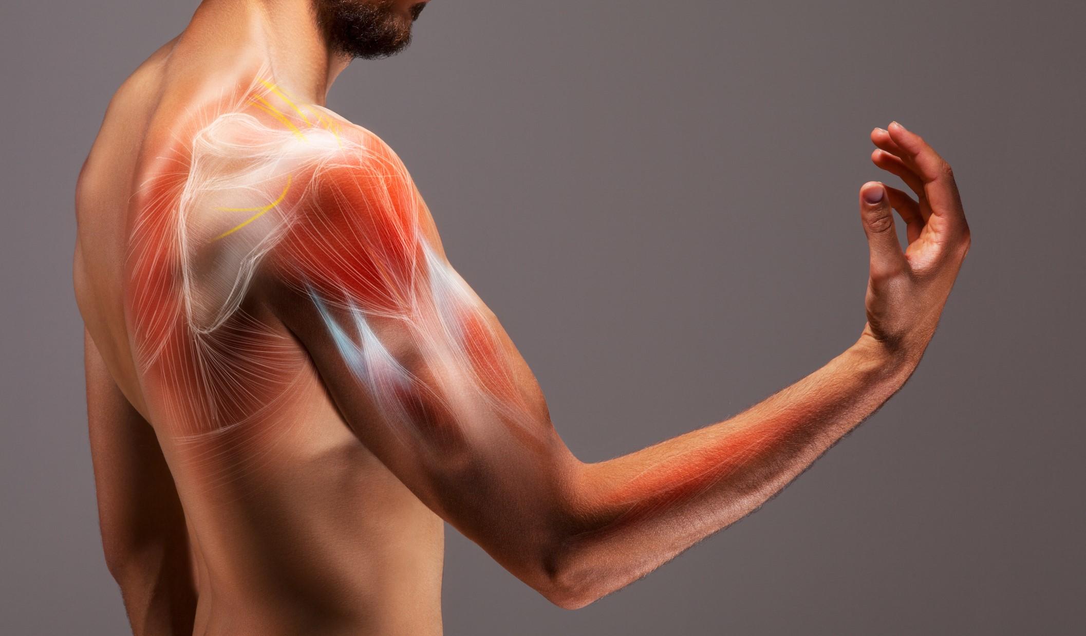 筋肉 痛 縄跳び
