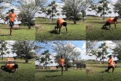 """動画解説:自宅でできるサーキットトレーニング。""""筋トレ+有酸素運動""""で持久力を鍛える"""