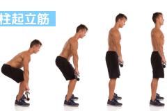 背中の筋肉「脊柱起立筋(腸肋筋・最長筋・棘筋)」の鍛え方。おすすめ筋トレメニューと効果を高めるポイント