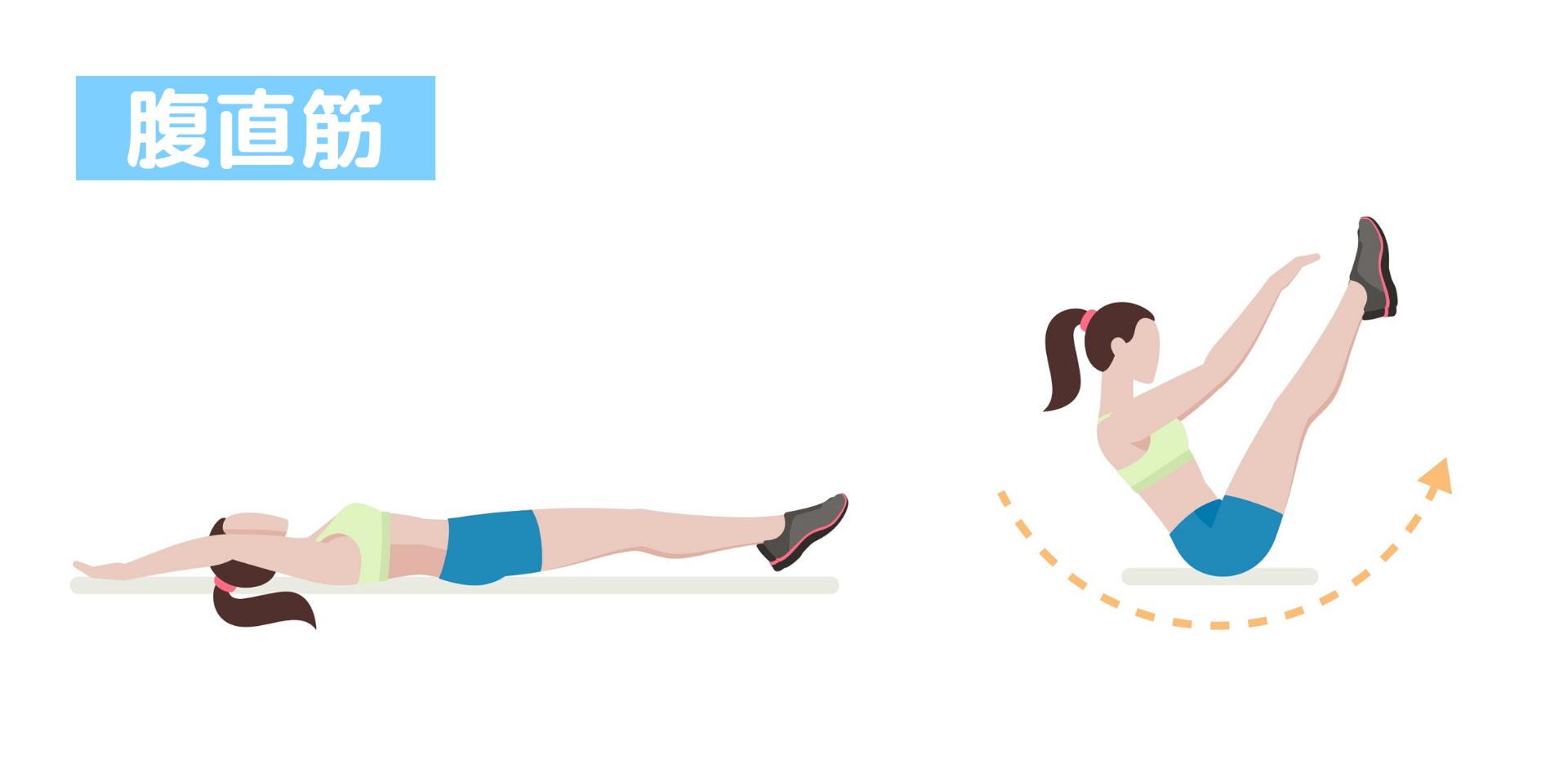 トレーニング 腹 横筋