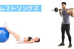 太ももの裏の筋肉「ハムストリングス」の鍛え方。おすすめ筋トレメニューと効果を高めるポイント