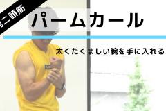 道具ナシ!力こぶの筋肉を鍛える筋トレ「パームカール」