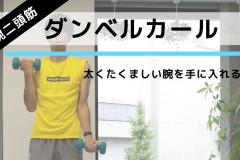 力こぶ(上腕二頭筋)を鍛えて引き締まった腕を手に入れる!「ダンベルカール」の正しいやり方:動画解説