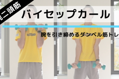 二の腕に効く!太くたくましい腕を手に入れるダンベル筋トレ